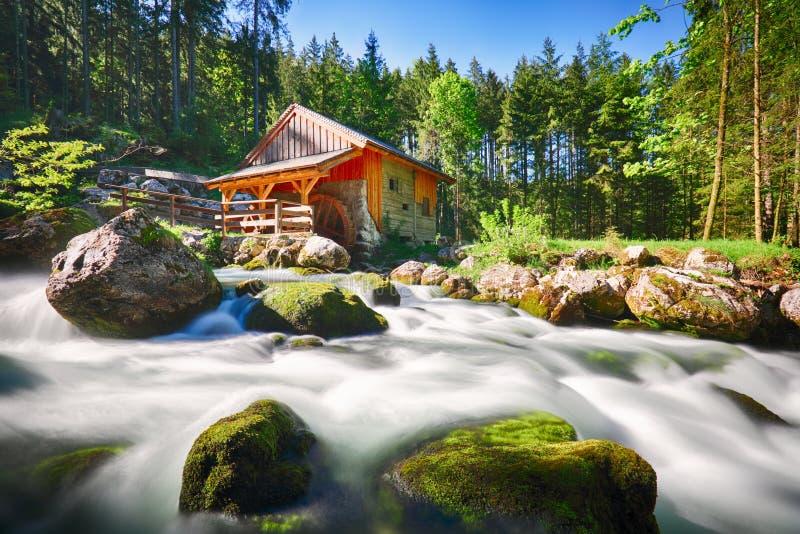Paesaggio di bellezza con il fiume e la foresta in Austria, Golling fotografie stock