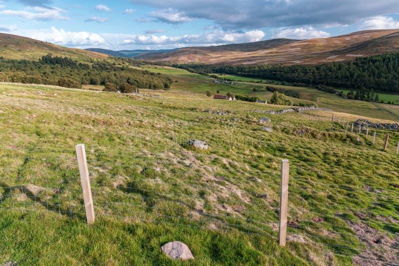 Paesaggio di Cairngorms immagini stock libere da diritti