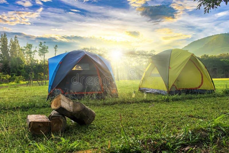 Paesaggio di campeggio all'aperto con il giorno soleggiato ed il fondo del supporto, m. immagini stock libere da diritti