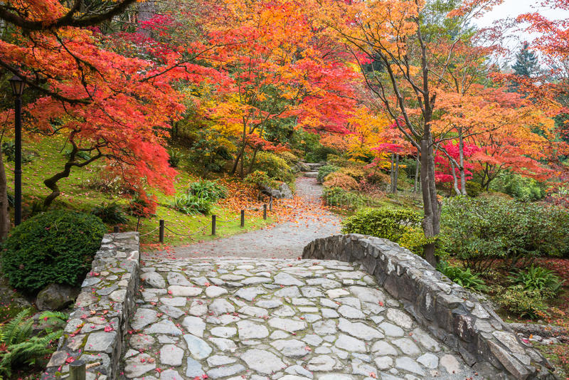 Paesaggio di colore di caduta con il ponte ed il percorso di camminata di pietra fotografia stock