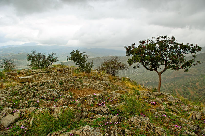 Paesaggio di Delfi. fotografie stock