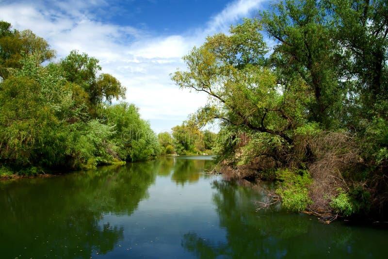 Paesaggio di delta del Danubio fotografia stock libera da diritti