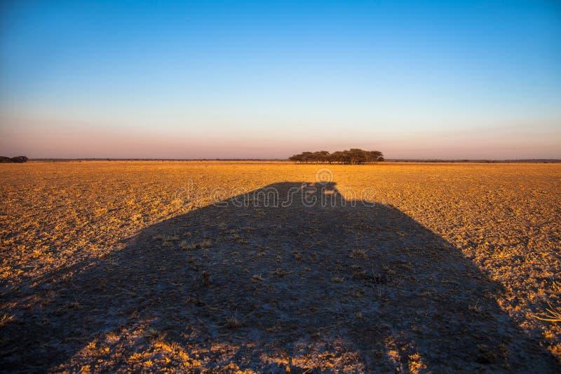 Paesaggio di deserto del Kalahari fotografia stock