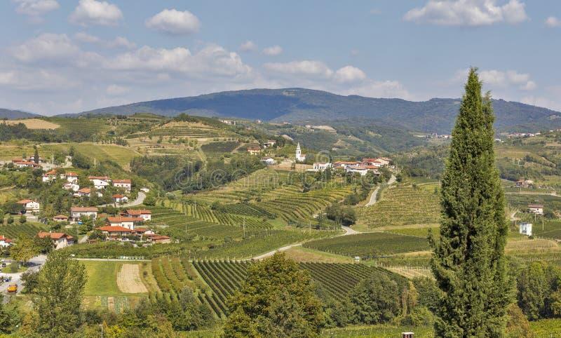 Paesaggio di Dobrovo in Slovenia immagini stock libere da diritti