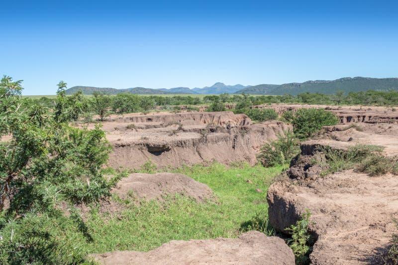Paesaggio di erosione del suolo dovuto disboscamento fotografia stock