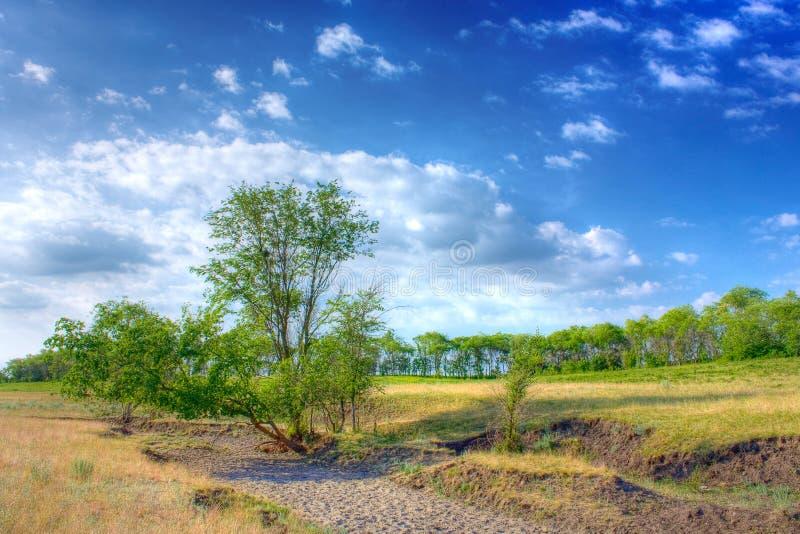 Paesaggio di estate fotografie stock
