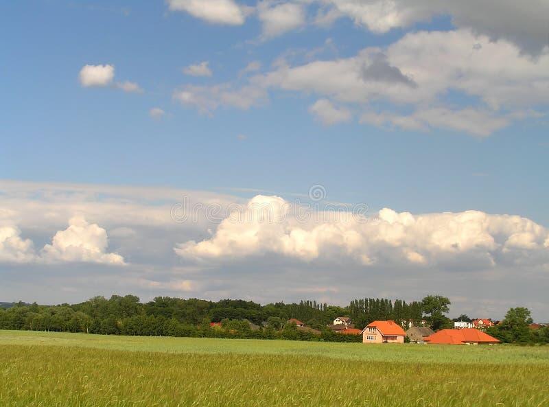 Paesaggio di estate immagine stock