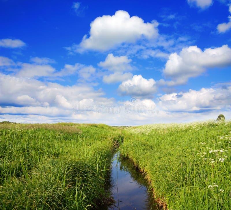 Paesaggio di estate, canale fotografia stock