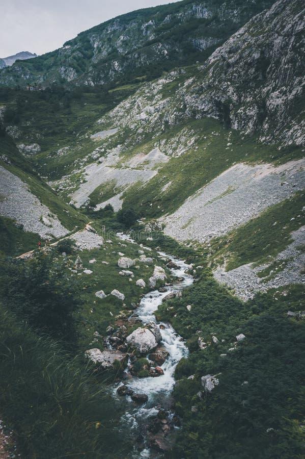 Paesaggio di estate con il fiume e la montagna fotografia stock libera da diritti