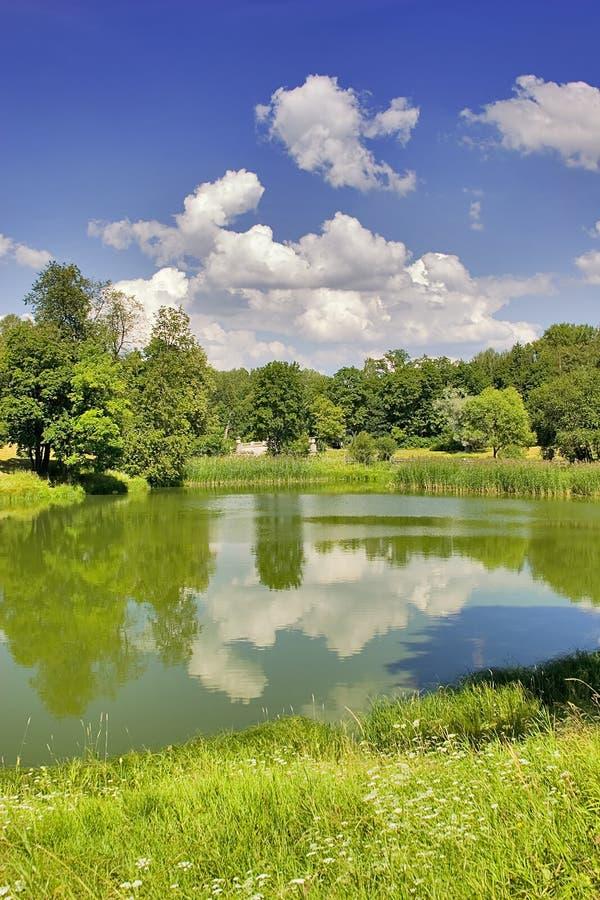 Download Paesaggio Di Estate Con Le Nubi Fotografia Stock - Immagine di terra, cielo: 3142414
