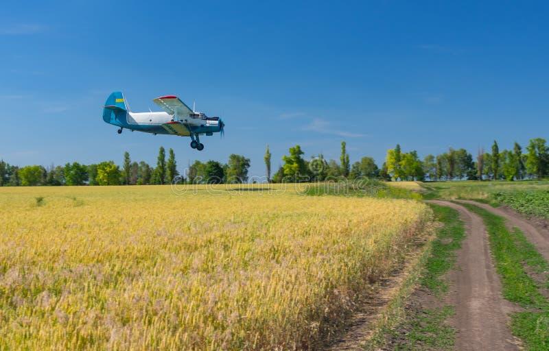 Paesaggio di estate con un vecchio aeroplano che sorvola un campo agricolo fotografie stock