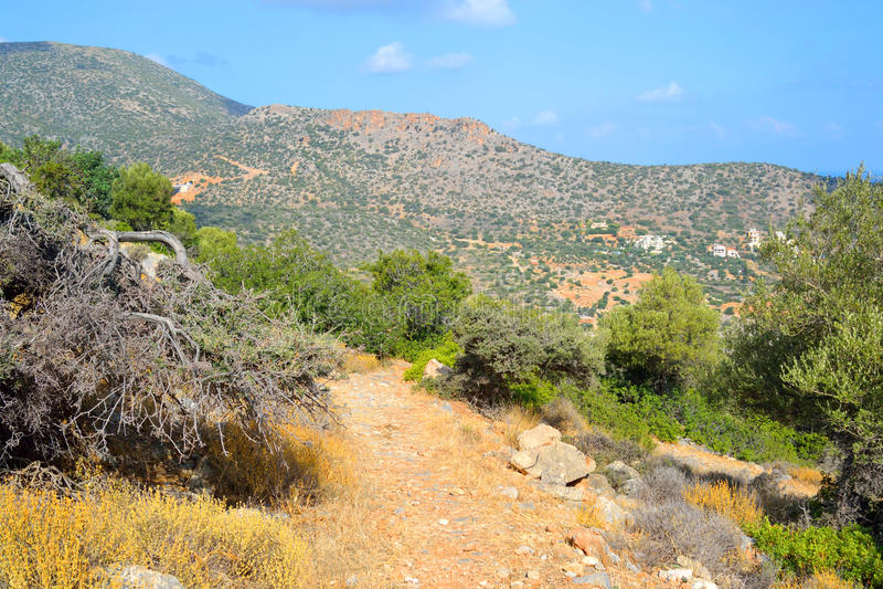 Paesaggio di estate in Creta immagini stock libere da diritti