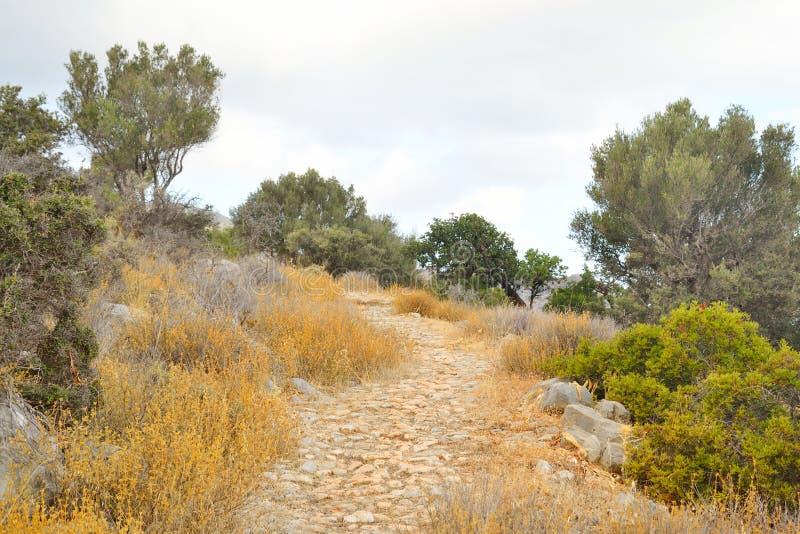 Paesaggio di estate in Creta immagine stock libera da diritti