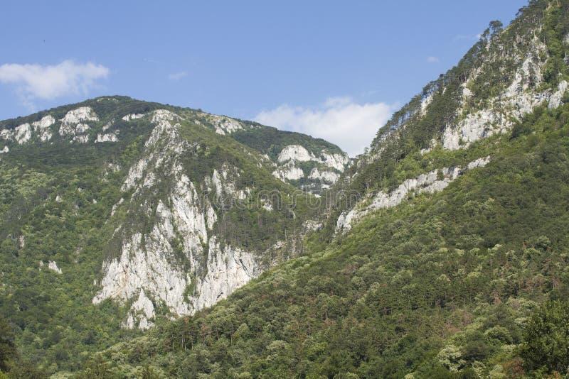 Paesaggio di estate della montagna immagine stock libera da diritti
