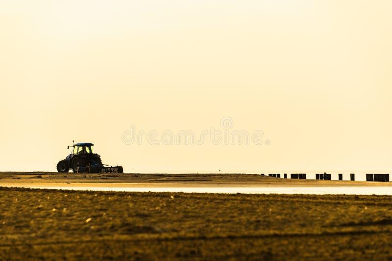 Paesaggio di estate dentro la laguna di Bibione fotografia stock libera da diritti