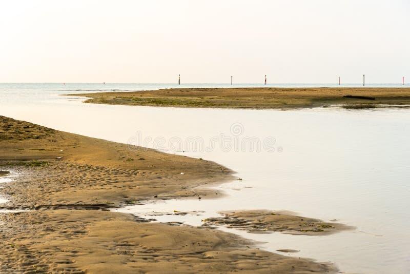 Paesaggio di estate dentro la laguna di Bibione immagini stock libere da diritti