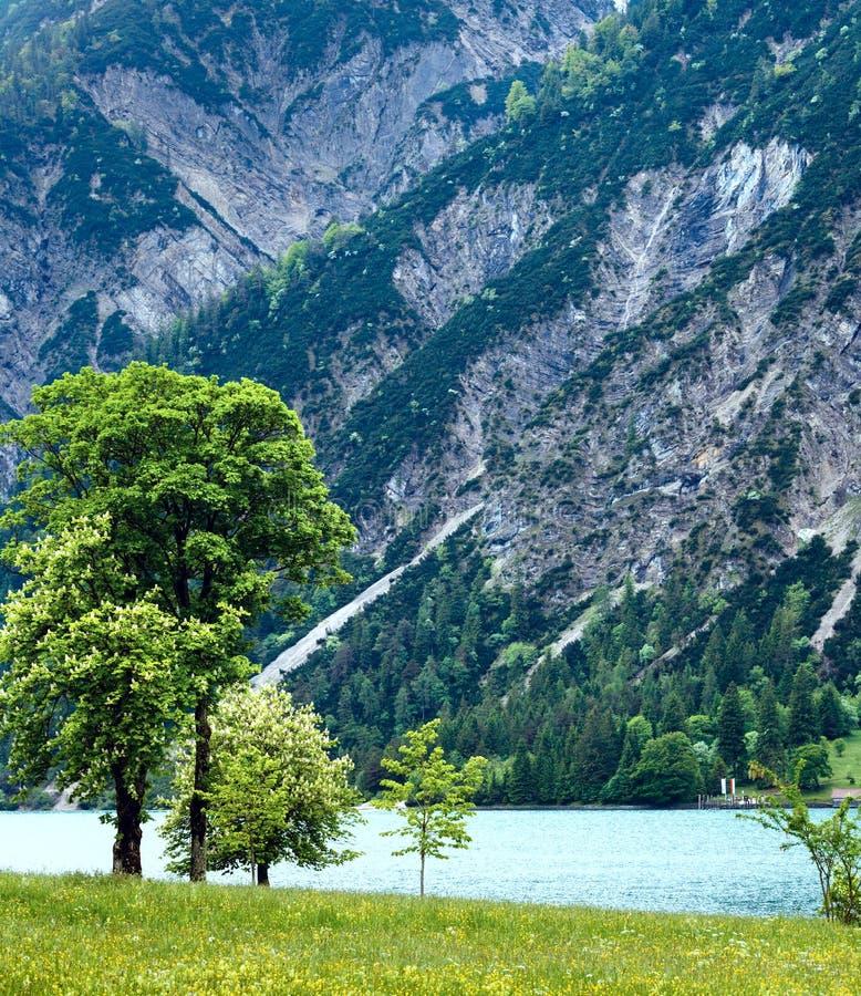 Paesaggio di estate di Achensee (Austria). fotografia stock