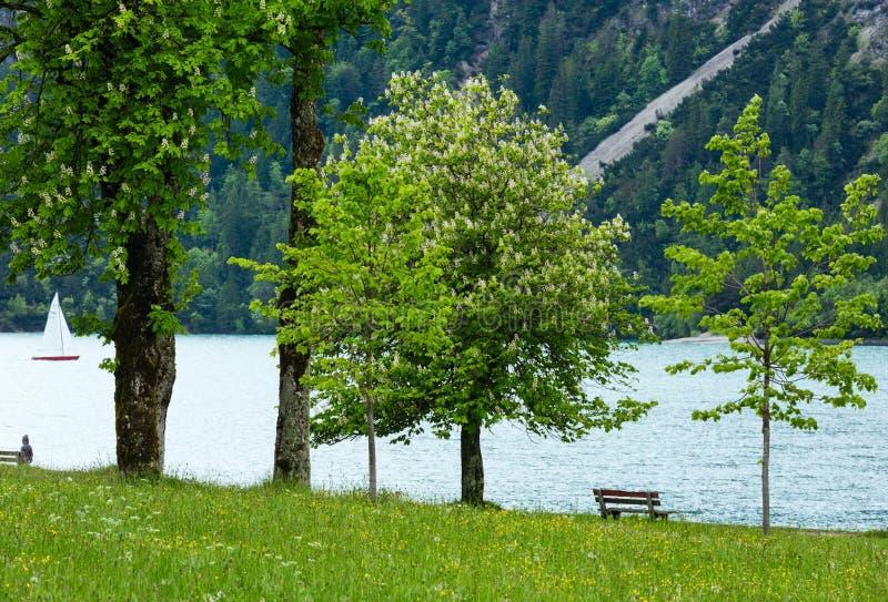 Paesaggio di estate di Achensee (Austria). fotografia stock libera da diritti