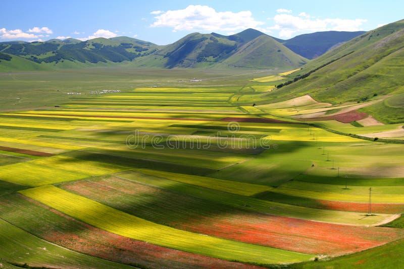 Paesaggio di estate di Castelluccio fotografie stock libere da diritti