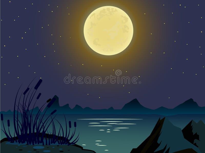 Paesaggio di estate di vettore Paesaggio di notte illustrazione di stock