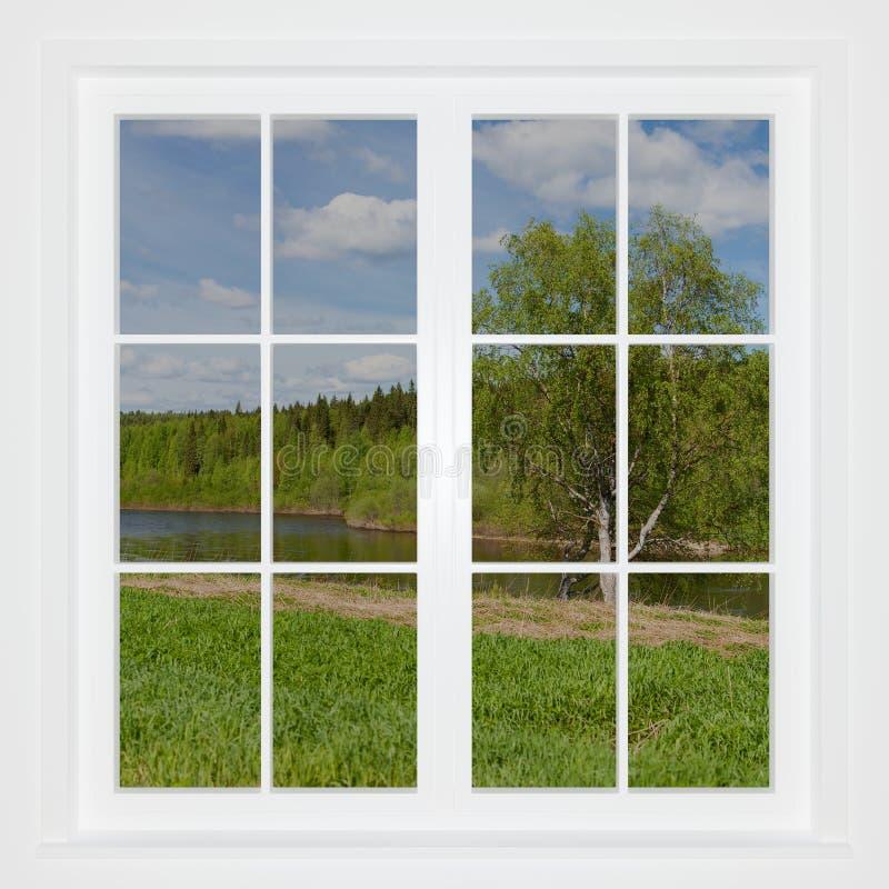 Paesaggio di estate dietro una finestra illustrazione di stock