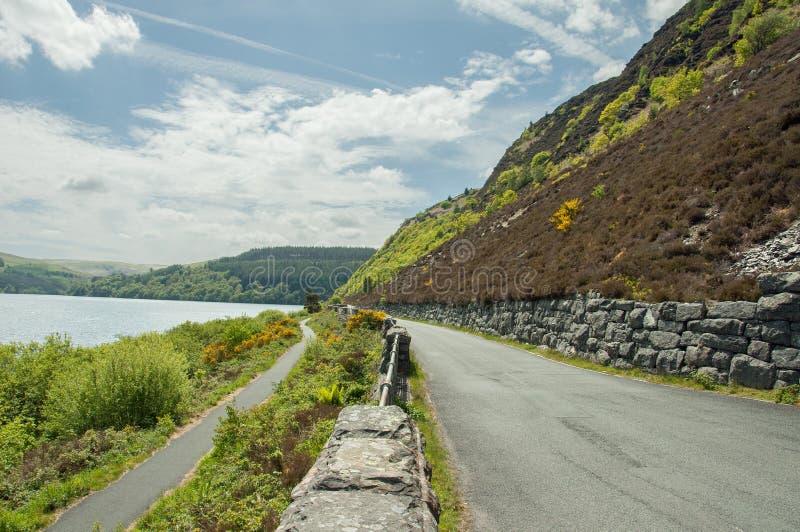 Paesaggio di estate lungo il bordo della strada nella valle di slancio di Powys, Galles immagine stock