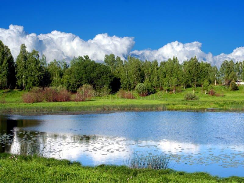 Paesaggio di estate vicino a Smolensk, Russia fotografia stock libera da diritti