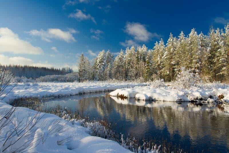 Paesaggio di inverno immagine stock