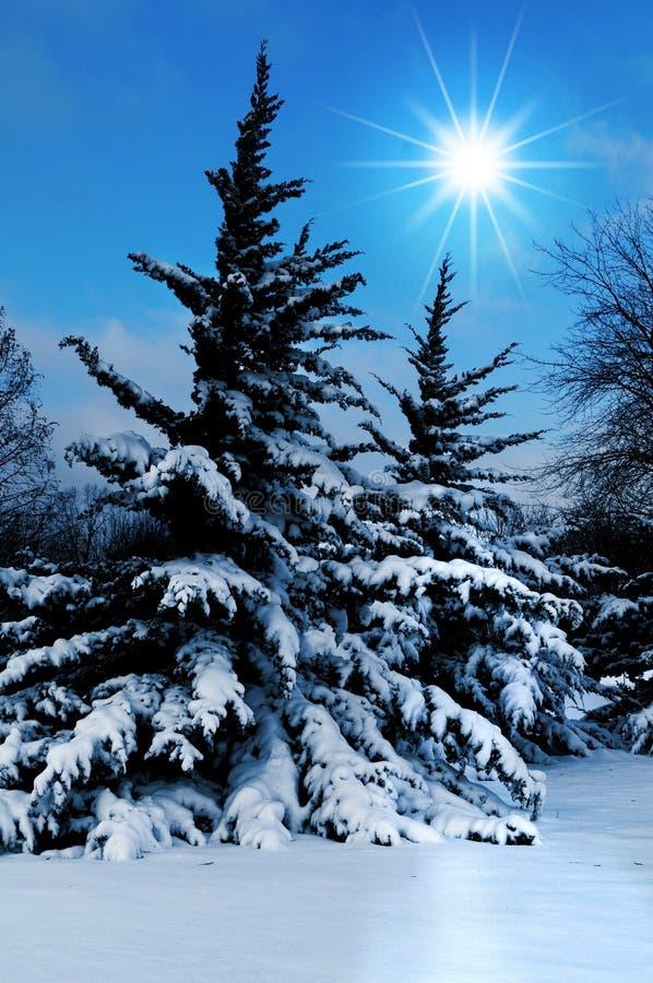 Download Paesaggio di inverno immagine stock. Immagine di neve - 3879731