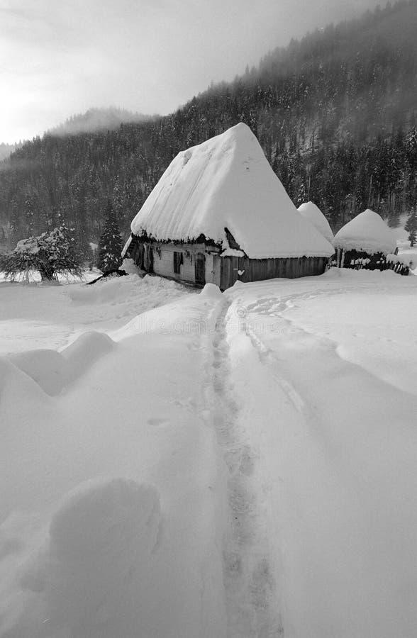 Download Paesaggio di inverno fotografia stock. Immagine di festa - 7314254
