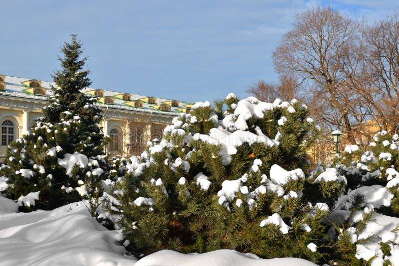 Paesaggio di inverno Alexander Gardens, Mosca, Russia immagine stock libera da diritti