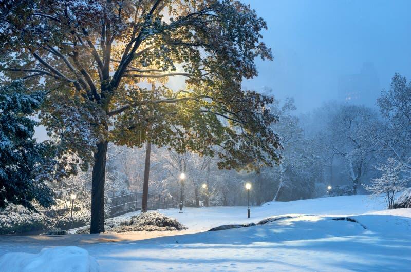 Paesaggio di inverno in Central Park New York City U.S.A. fotografie stock libere da diritti