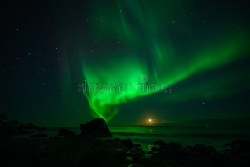 Paesaggio di inverno con Aurora Borealis e la luna piena luce nordica s nell'arcipelago di Lofoten, Norvegia immagine stock libera da diritti