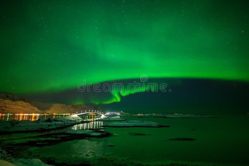 Paesaggio di inverno con Aurora Borealis luce nordica s nell'arcipelago di Lofoten, Norvegia fotografia stock libera da diritti