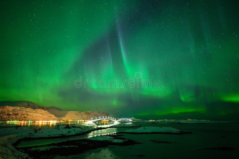Paesaggio di inverno con Aurora Borealis luce nordica s nell'arcipelago di Lofoten, Norvegia fotografie stock libere da diritti