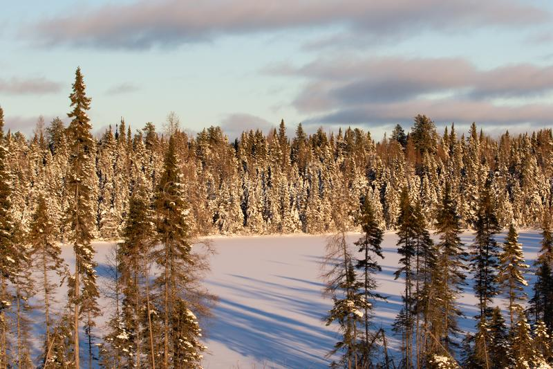 Paesaggio di inverno con il lago congelato in Ontario Canada immagine stock