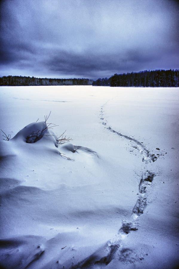 Paesaggio di inverno con il percorso di orma attraverso la neve fotografia stock