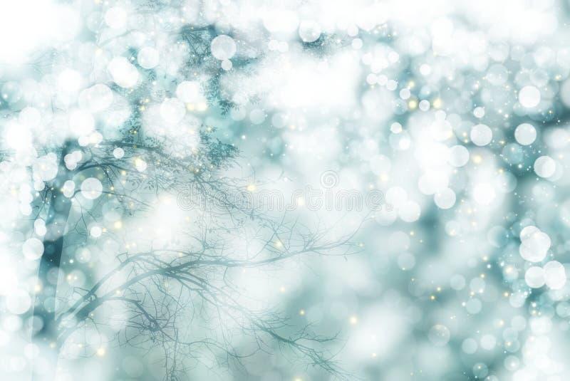 Paesaggio di inverno con l'albero bianco e natale e nuovo anno della neve immagini stock
