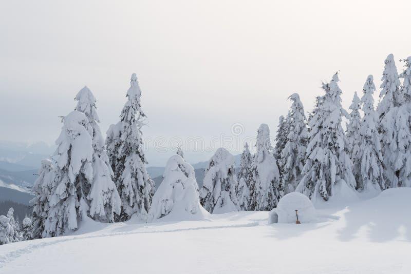 Paesaggio di inverno con un iglù della neve immagine stock