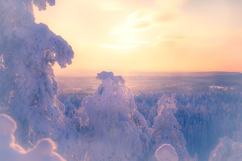 paesaggio di inverno da Sotkamo, Finlandia fotografia stock