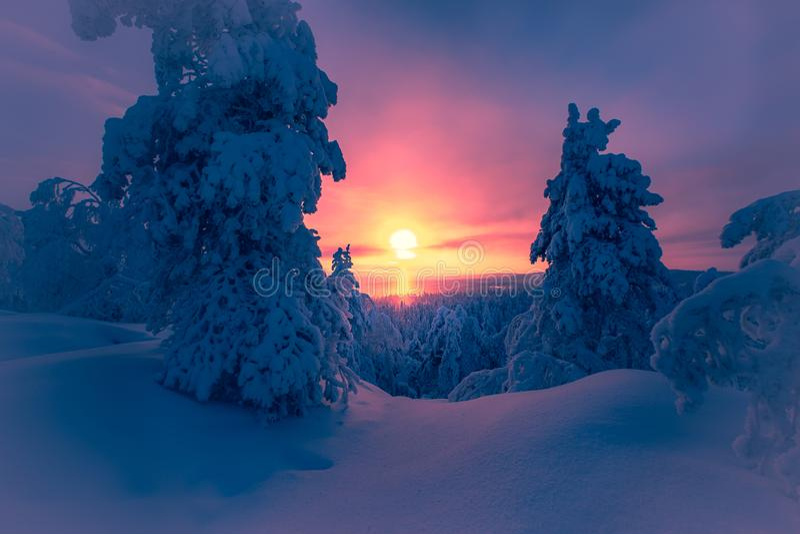 paesaggio di inverno da Sotkamo, Finlandia immagini stock libere da diritti