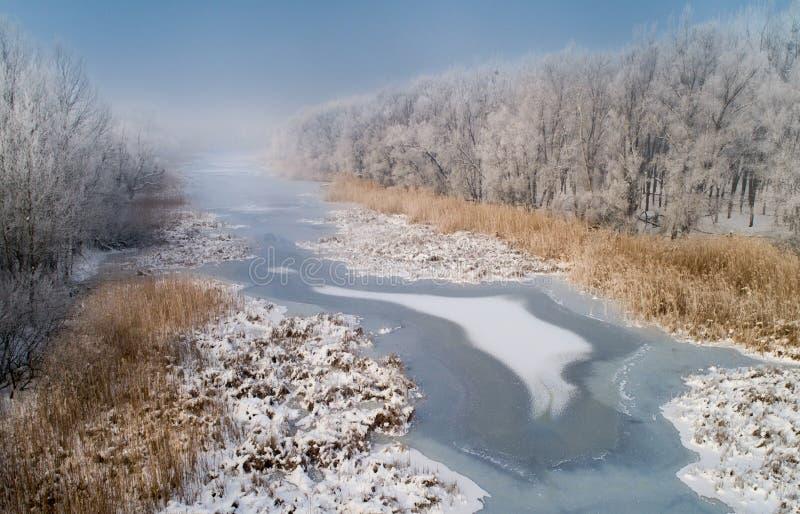 Paesaggio di inverno del fiume congelato in foresta immagini stock libere da diritti