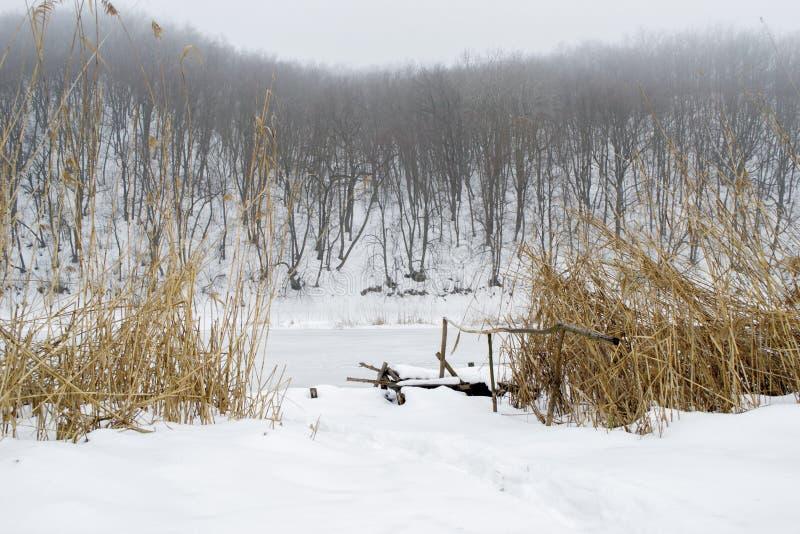Paesaggio di inverno del ponte e delle canne da pesca sul fiume congelato immagini stock