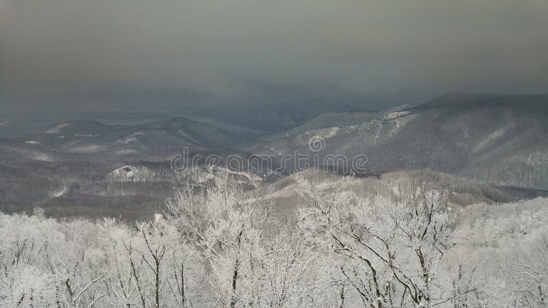 Paesaggio di inverno della Danubio-curvatura fotografia stock libera da diritti