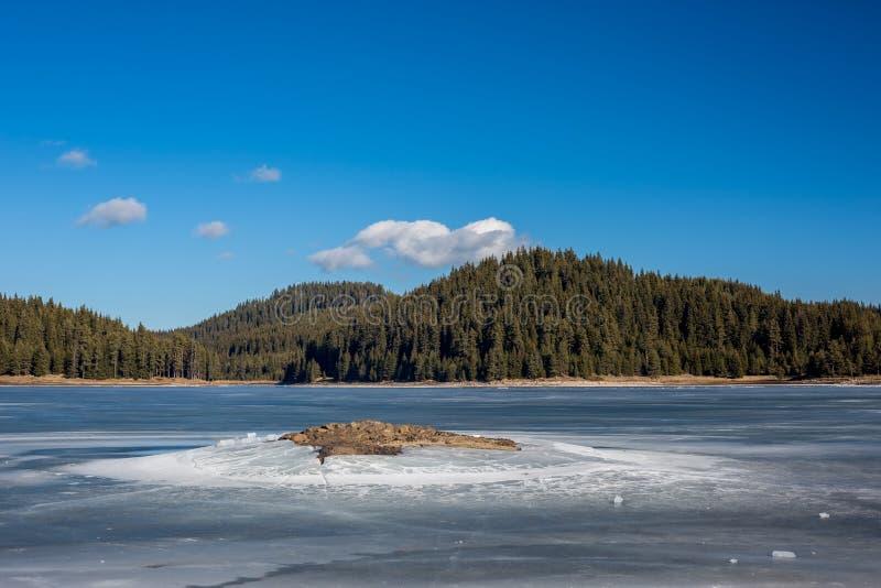 Paesaggio di inverno Lago congelato, abetaia Bulgaria, montagne di Rhodopes, lago Shiroka Polyana Isola rocciosa nella parte ante fotografia stock
