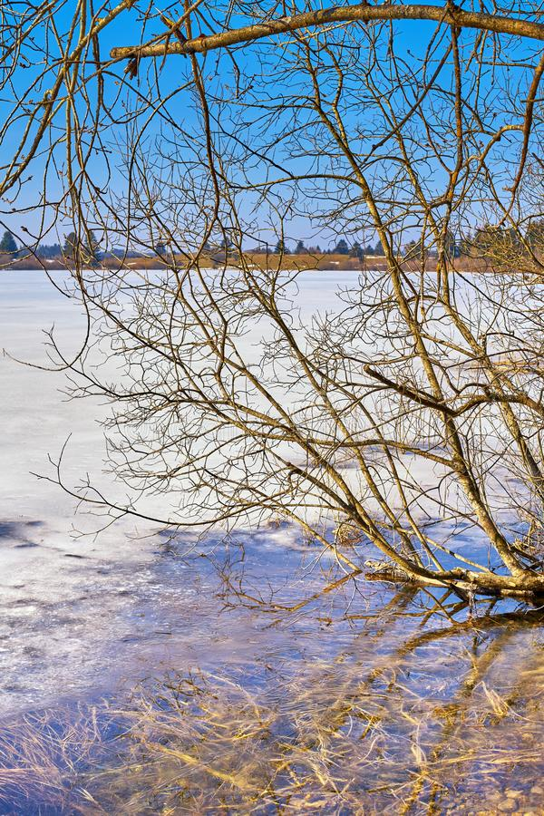 Paesaggio di inverno lungo un lago congelato a metà giornata immagine stock libera da diritti