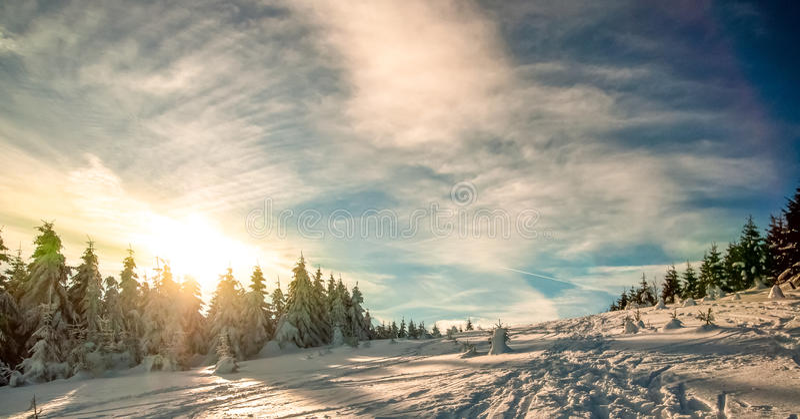 Paesaggio di inverno in montagna di Harz immagini stock libere da diritti