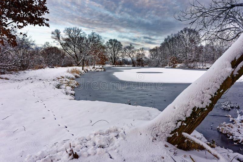 Paesaggio di inverno nell'ambito del tramonto di sera fotografia stock