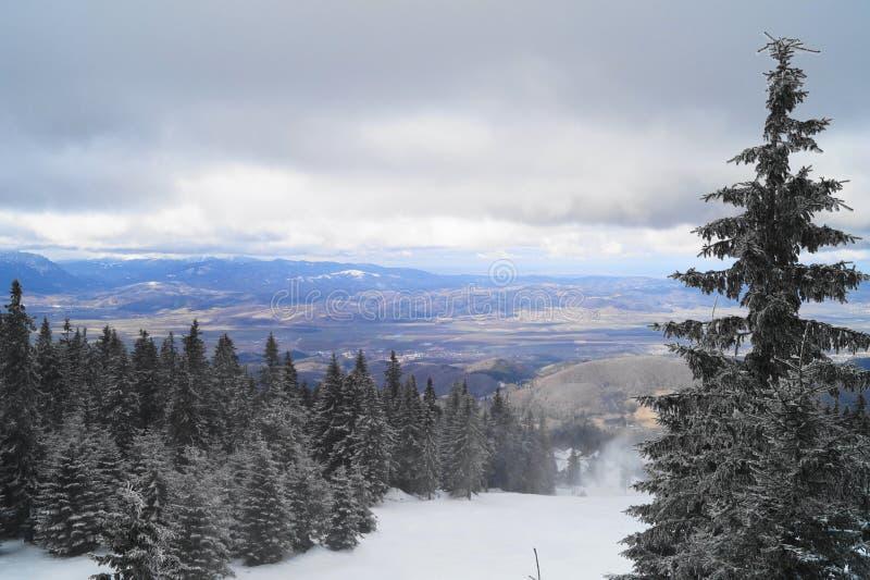 Paesaggio di inverno in Romania fotografia stock