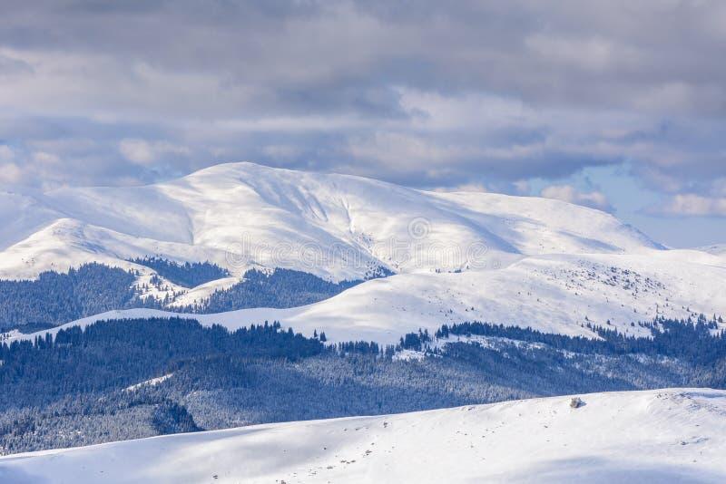 Paesaggio di inverno sopra le montagne carpatiche Panorama del mou della neve immagine stock libera da diritti